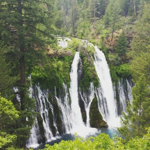 First_time_to_Burney_Falls._Beautiful.