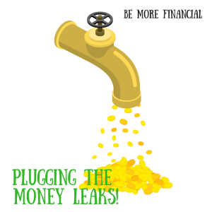 plugging-the-money-leaks
